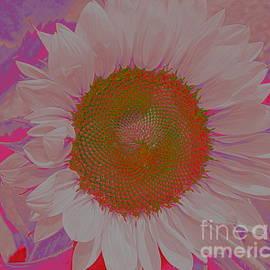 Sunflower in Pink and Purple Pop Art by Dora Sofia Caputo