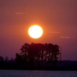 Bill Cannon - Sunrise Along the Potomac