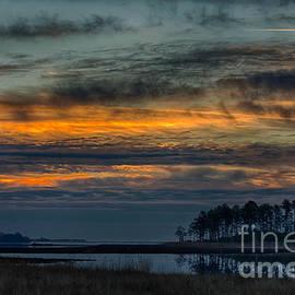 Ursula Lawrence - Sunrise at Blackwater Wildlife Refuge I