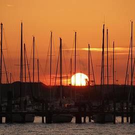 Sunrise Davis Island  by Lori  Burrows