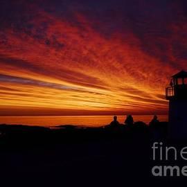 Sunrise Display by Joy Bradley