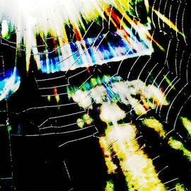 Gustave Kurz - Sunrise In The Web