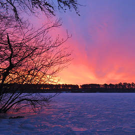 Sunrise on Ice by Dianne Cowen Photography