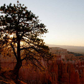 Tracy Winter - Sunrise over Bryce Canyon
