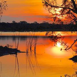 AnnaJo Vahle - Sunrise over Orlando Wetlands