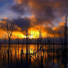 Sunrise by Raymond Salani III
