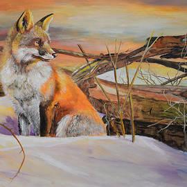 Alvin Hepler - Sunrise Red Fox