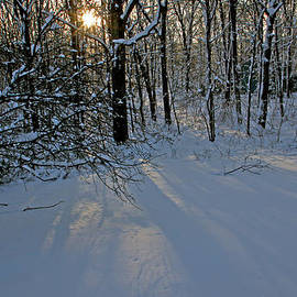 Sunrise Reflected on Snow by Gerald Mitchell