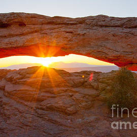 Sunrise Under Mesa Arch by Dan Hartford