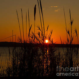 Sunset - 1 by Heather Roper