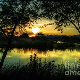 Sunset Arizona by Tam Ryan