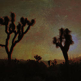 Sunset at Joshua Tree by Sandra Selle Rodriguez