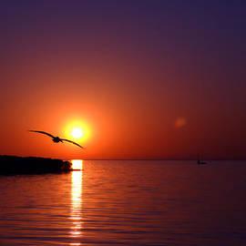 Beverly Stapleton - Sunset Blue