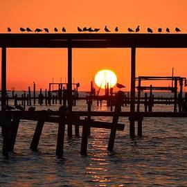 Sunset Colors on Clear Santa Rosa Sound with Gulls by Jeff at JSJ Photography
