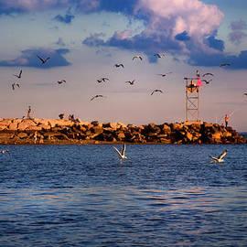 Sunset in Milford Harbor by Joann Vitali