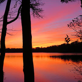Sunset Lake by Dianne Cowen