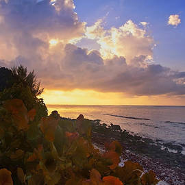 Sunset on Little Cayman by Stephen Anderson