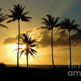 Sunset On Molokai Hawaii by Bob Christopher