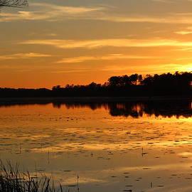 Cynthia Guinn - Sunset On The Lake
