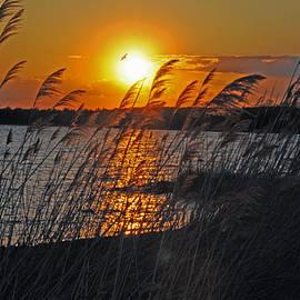 Dave Goggin - Sunset over Bailey