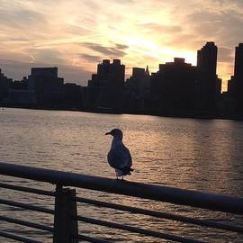 Sunset Over NYC Skyline by John Telfer