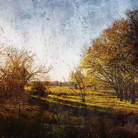 Sunset Rural Oklahoma by Toni Hopper