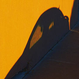 John Hansen - Sunset Shadow Car