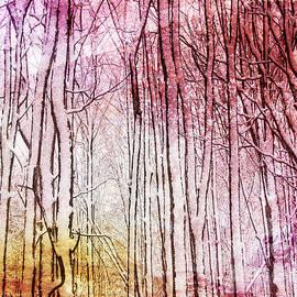 Kathi Mirto - Sunset Snow Twigs