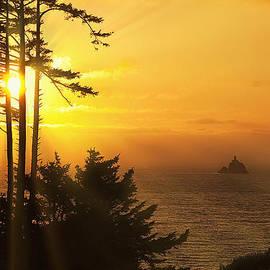 Andrew Soundarajan - Sunset thru the Trees
