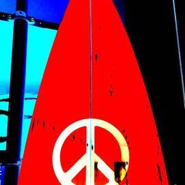 Ed Weidman - Surf For Peace