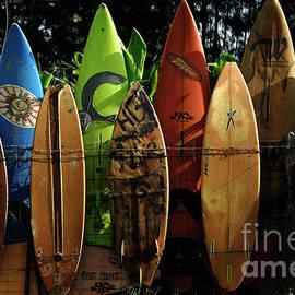 Bob Christopher - Surfboard Fence 4