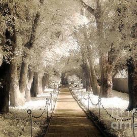 Kathy Fornal - Surreal Dreamy Infrared Sepia - Hopeland Gardens Park South Carolina Pathway Nature Landscape