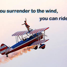 Mike Flynn - Surrender to the Wind
