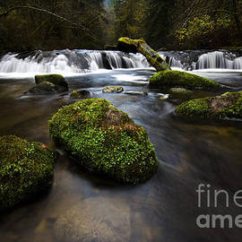 Sweet Creek Oregon 10 by Bob Christopher