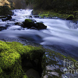 Bob Christopher - Sweet Creek Oregon 1