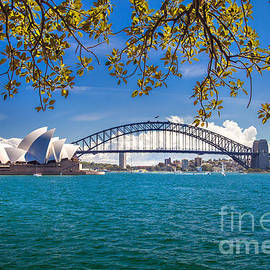 Sydney Harbour Skyline 2 by Az Jackson