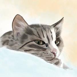 Sarah Dowson - Tabby Cat