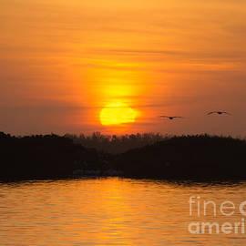 Chris Scroggins - Tarpon Bay Sunset 2