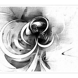 Tendrils In Pencil 05 by Amanda Moore