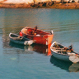 Tethered Rowboats by Susan Crossman Buscho