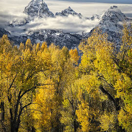 Wildlife Fine Art - Tetons Peaks in Autumn