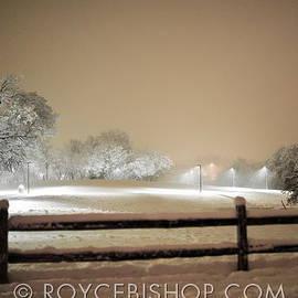 Texas Blizzard by Royce Bishop