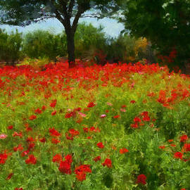 Michael Flood - Texas Hill Country Corn Poppies