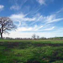 Texas Sky by Brian Harig