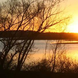 Texas Winter Sunset On Lake Tawakoni by Amelia Painter