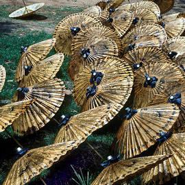 Thai Umbrellas by Eva Kato