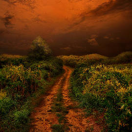 Phil Koch - That We May Know Our Way