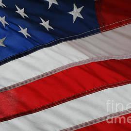 E B Schmidt - The American Flag