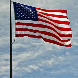 LeeAnn McLaneGoetz McLaneGoetzStudioLLCcom - The American Flag Waving in the Wind