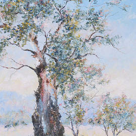 The ancient gum tree by Jan Matson